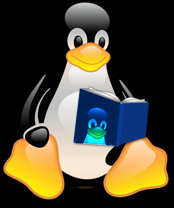 Terminología de Linux