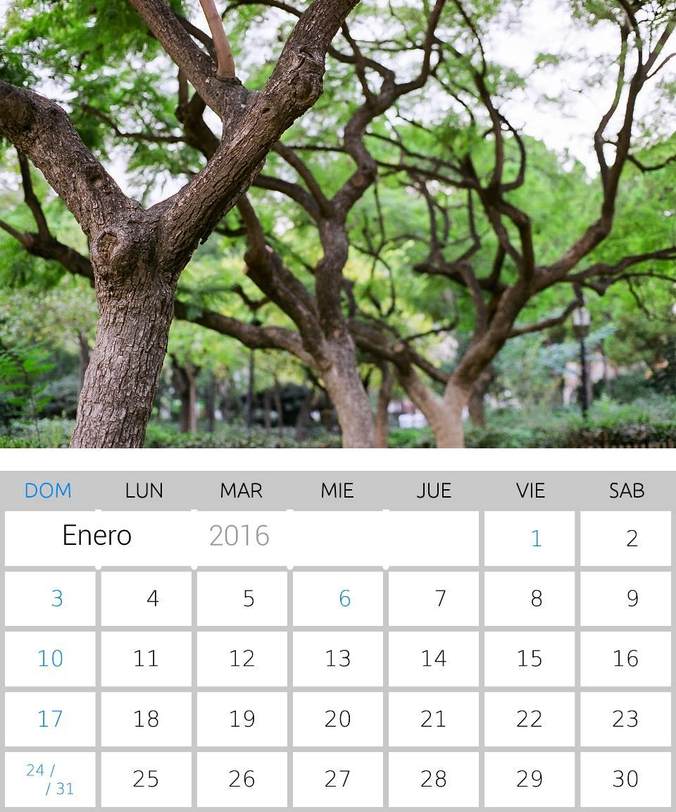 Calendario 2016 de Enero